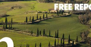 > FREE REPORT