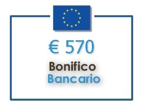 bonifico UE